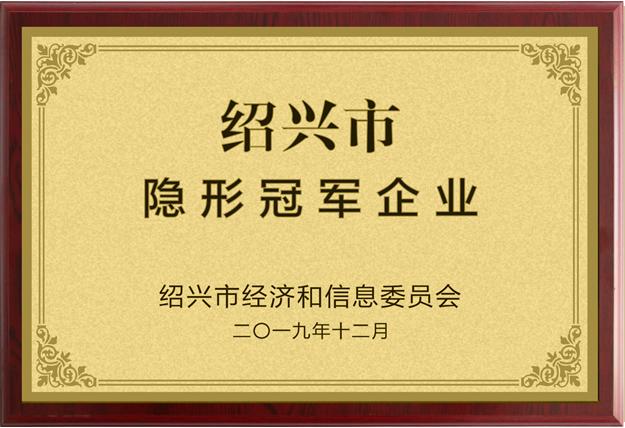2019年绍兴市隐形冠军企业